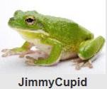樹蛙阿貝.jpg