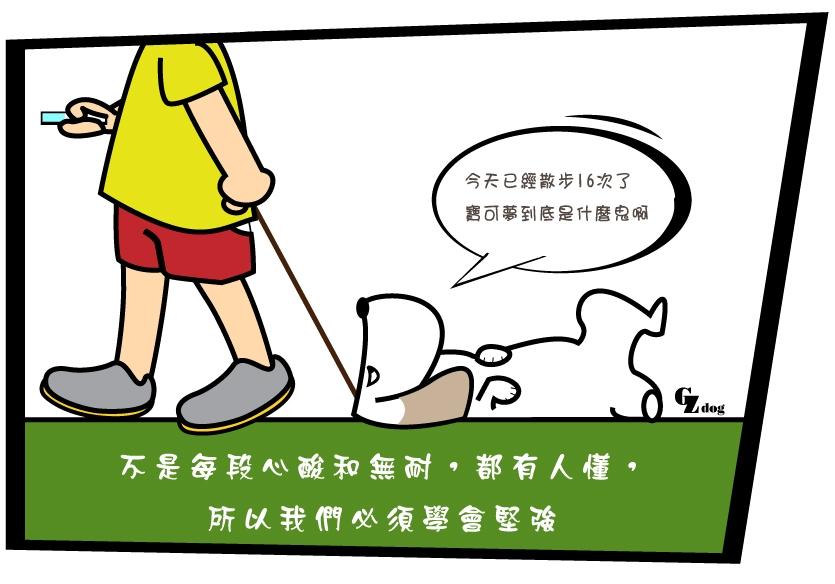 寶可夢2.jpg