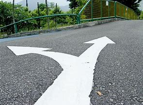 兩條路.jpg