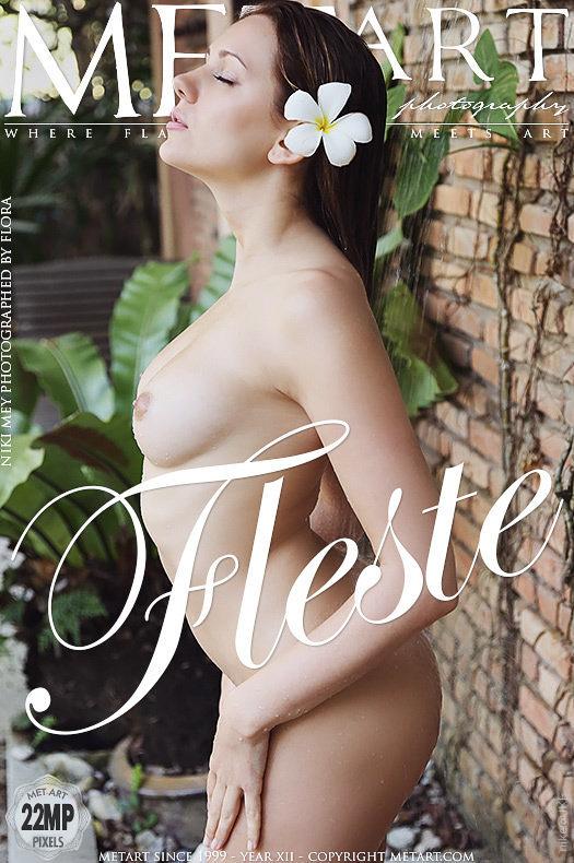 MetArt  Niki Mey - Fleste - 貼圖 - 歐美寫真 -