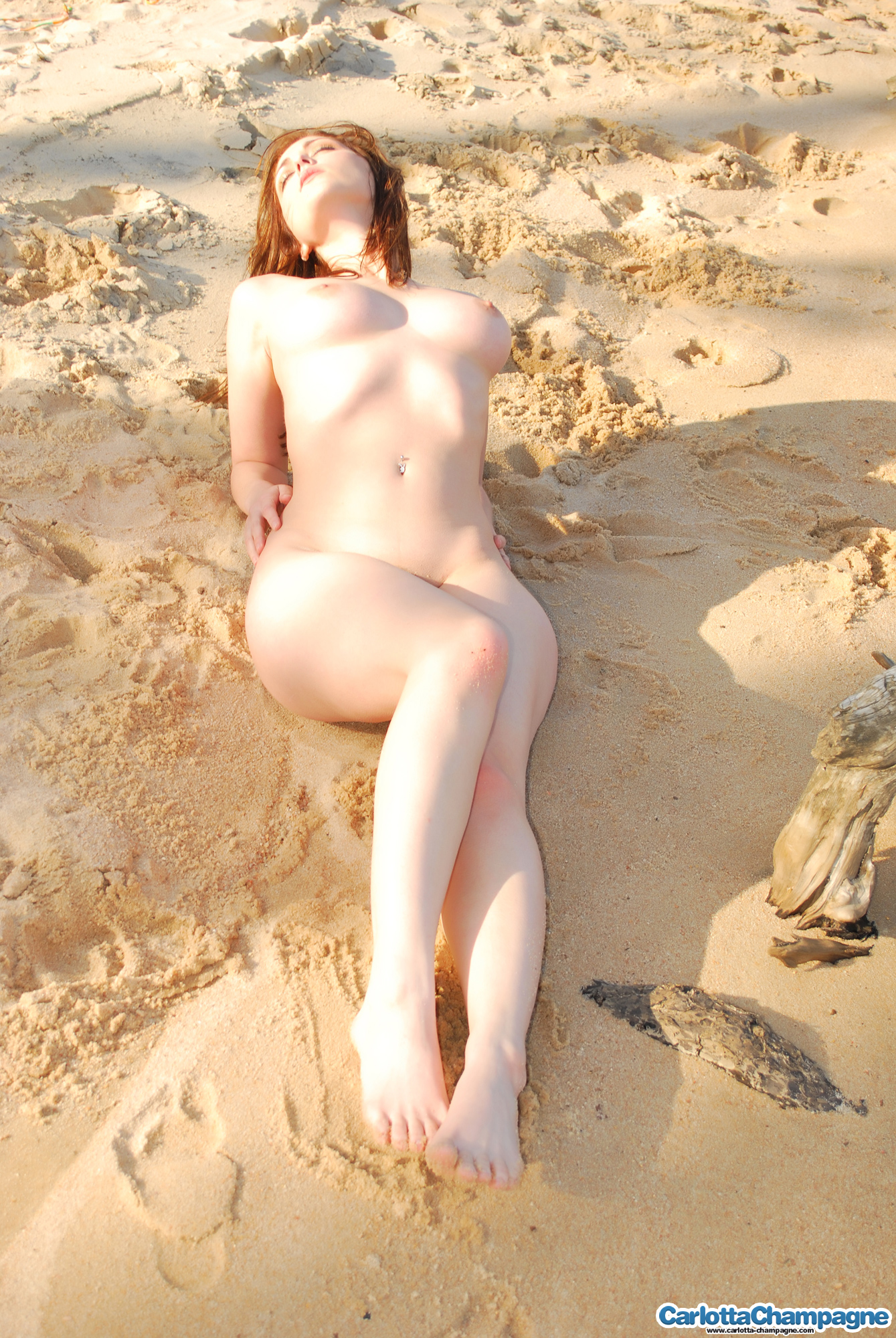 Carlotta Champagne nude beach party 2 - 貼圖 - 歐美寫真 -